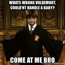 Harry Potter Come At Me Bro - whats wrong voldemort, could'nt handle a baby? come at me bro