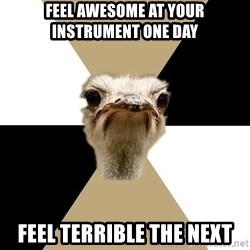 Music Major Ostrich - Feel awesome at your instrument one day feel terrible the next