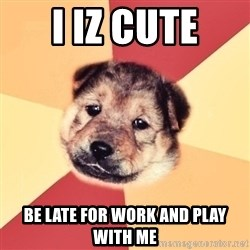 Typical Puppy - i iz cute be late for work and play with me
