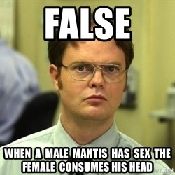 Dwight Schrute - False  when  a  male  mantis  has  sex  the  female  consumes his head