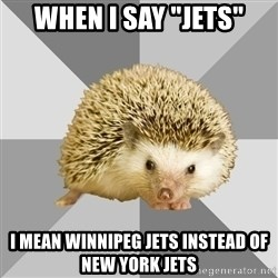 "Hockey Hedgehog - WHEN I SAY ""JETS"" I MEAN WINNIPEG JETS INSTEAD OF NEW YORK JETS"