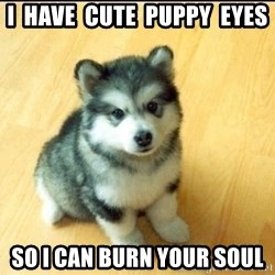 Baby Courage Wolf - I  have  cute  puppy  eyes so i can burn your soul