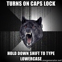 Insanity Wolf - turns on caps lock hold down shift to type lowercase