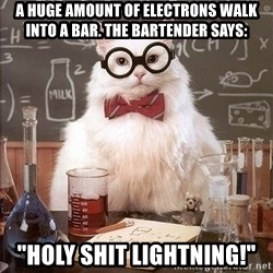 """Chemistry Cat - A Huge amount of electrons walk into a bar. the bartender says: """"Holy Shit Lightning!"""""""