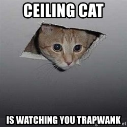 Ceiling cat - Ceiling cat Is watching you trapwank