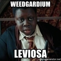 Harry Potter Black Kid - Weedgardium leviosa