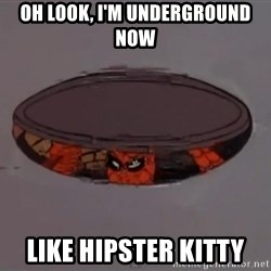 Spiderman in Sewer - Oh look, i'm underground now like hipster kitty