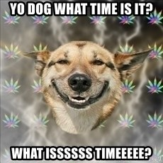 Original Stoner Dog - yo dog what time is it? what issssss timeeeee?
