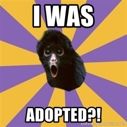 Shocked Simian - I was Adopted?!
