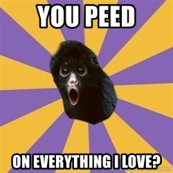 Shocked Simian - You peed on everything I love?