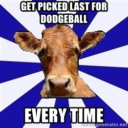 Low self esteem cow - get picked last for dodgeball every time