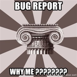 Architect Student - bug report why me ????????