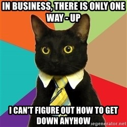 Business Cat - In business, there is only one way - up i can't figure out how to get down anyhow