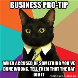 Business Cat - business pro-tip when accused of something you've done wrong, tell them that the cat did it