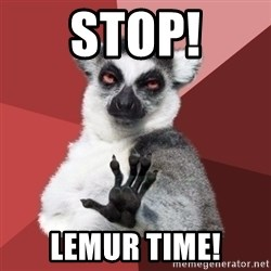 Chill Out Lemur - Stop! Lemur time!