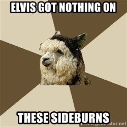Fyeahknittingalpaca - elvis got nothing on these sideburns
