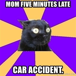 Anxiety Cat - mom five minutes late car accident.