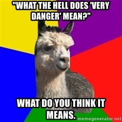 "Arashian Alpaca - ""what the hell does 'very danger' mean?"" what do you think it means."