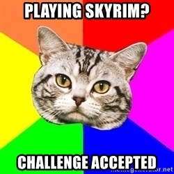 Wisdom Cat - Playing Skyrim? Challenge accepted
