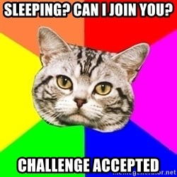 Wisdom Cat - Sleeping? can I join you? Challenge accepted