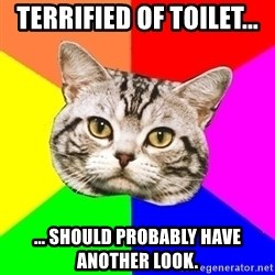 Wisdom Cat - Terrified of toilet... ... should probably have another look.