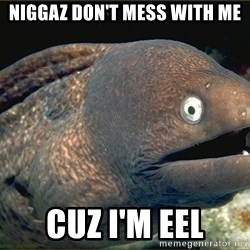 eel - niggaz don't mess with me cuz i'm eel