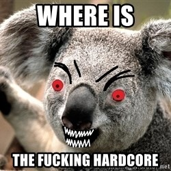 Abortion Koala - Where is the fucking hardcore
