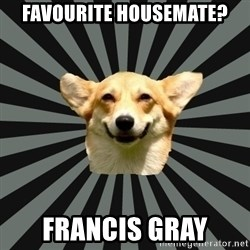 Color Blind Dog - Favourite housemate? francis gray