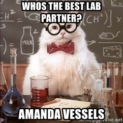 Chemistry Cat - whos the best lab partner? Amanda vessels