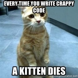 Sad Kitty - Every time you write crappy code a kitten dies