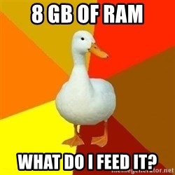 Technologically Impaired Duck - 8 gb of ram what do i feed it?