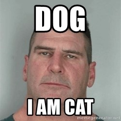Son Am Disappoint - Dog I am Cat