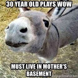 Assumptions Donkey - 30 year old plays wow must live in mother's basement