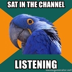 Paranoid Parrot - sat in the channel listening