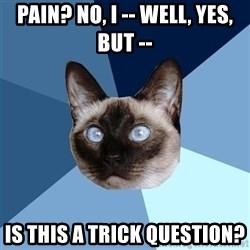 Chronic Illness Cat - pain? No, i -- well, yes, but -- Is this a trick question?