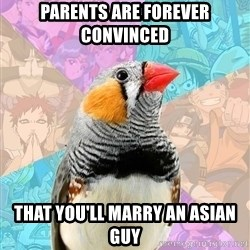 Former Otaku Finch - PARENTS ARE FOREVER CONVINCED THAT YOU'LL MARRY AN ASIAN GUY