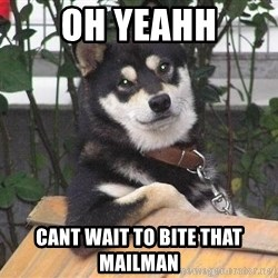 Gay Dog - oh yeahh cant wait to bite that mailman