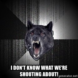 Insanity Wolf - I Don't Know what we're shouting about!