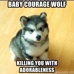 Baby Courage Wolf - baby courage wolf kILLING YOU WITH ADORABLENESS