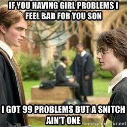 Harry Potter  - If you having girl problems I feel bad for you son I got 99 problems but a snitch ain't one