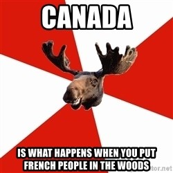 Stereotypical Canadian Moose - Canada Is what happens when you put french people in the woods