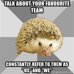 "Hockey Hedgehog - TALK ABOUT YOUR FAVOURITE TEAM CONSTANTLY REFER TO THEM AS ""US"" AND ""WE"""
