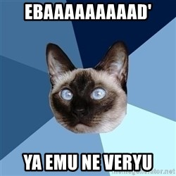 Chronic Illness Cat - EBAAAAAAAAAD' YA EMU NE VERYU