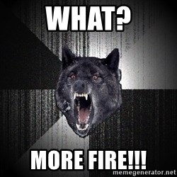 Insanity Wolf - WHAT? MORE FIRE!!!