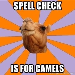 Foul Bachelor Camel - Spell check is for camels