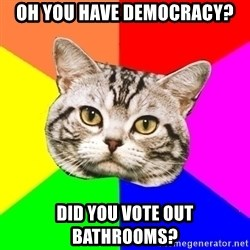 Wisdom Cat - Oh you have democracy? did you vote out bathrooms?