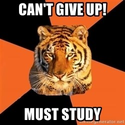 Techie Tigers - Can't give up! must study