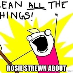 clean all the things -  Rosie streWn about