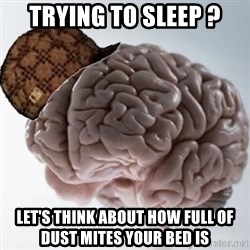Scumbag Brain - Trying to sleep ? Let's think about how full of dust mites your bed is