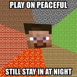 Minecraft Guy - Play on peaceful still stay in at night